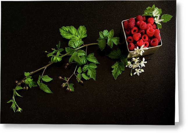 Raspberries On A Black Background Greeting Card by Margaret Goodwin