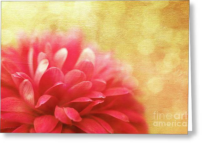 Raspberry Champagne  Greeting Card by Beve Brown-Clark Photography