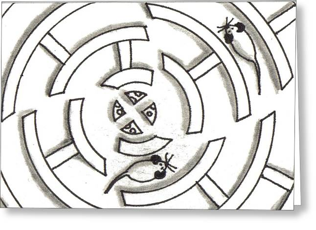 Rat Race Mouse Maze Greeting Card by Joshua Hullender