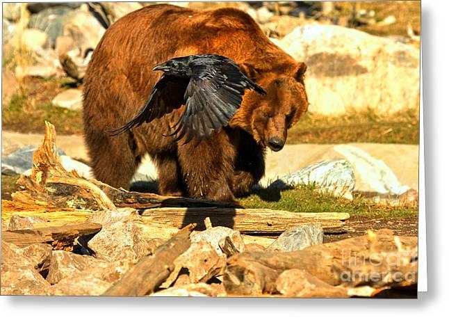 Raven And Kodiak Greeting Card