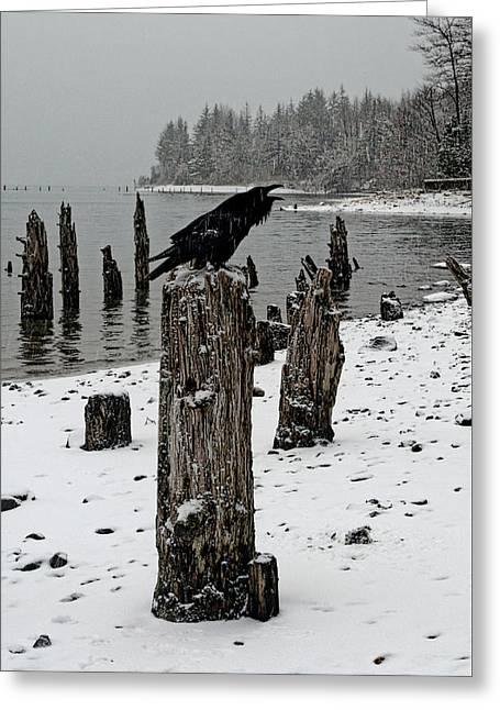 Raven Call Greeting Card