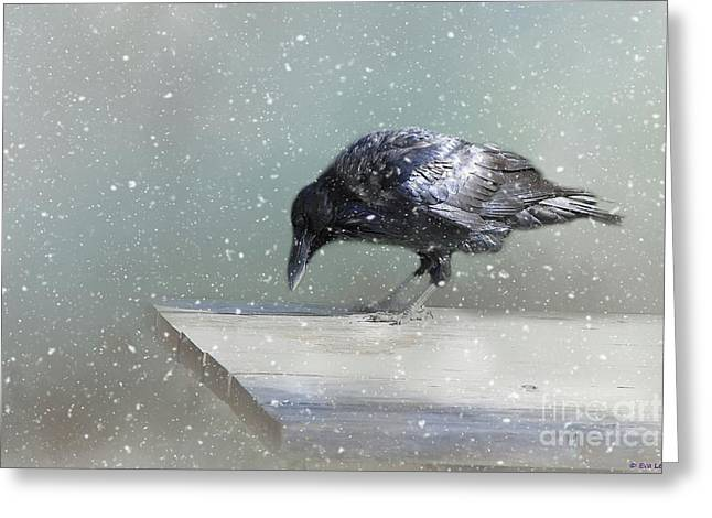 Raven In Winter Greeting Card