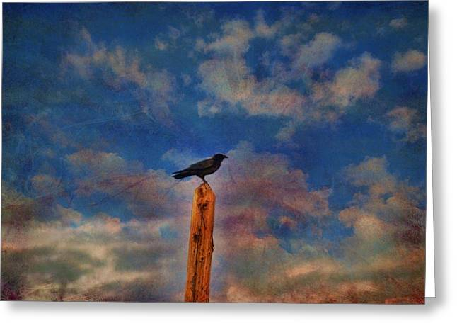 Greeting Card featuring the photograph Raven Pole by Jan Amiss Photography