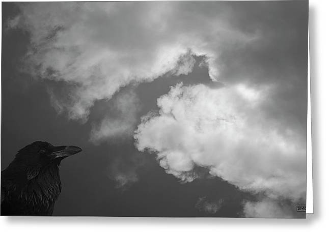 Greeting Card featuring the photograph Raven Vi Bw by David Gordon