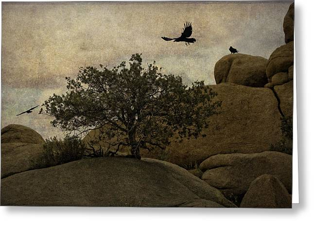 Ravens Searching For Food Greeting Card