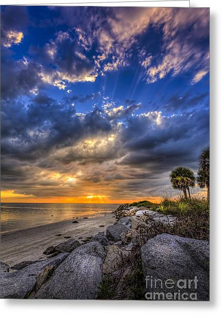Raw Beauty Greeting Card by Marvin Spates