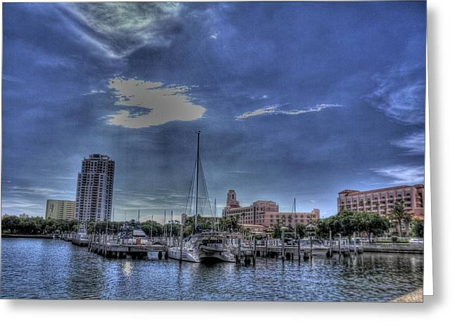 Ray Port Greeting Card by Larry Underwood