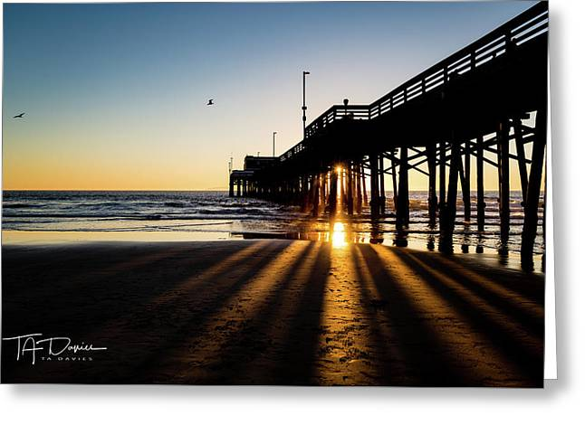 Rays Of Evening Greeting Card
