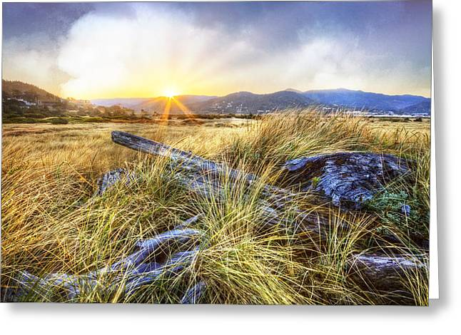 Rays On The Sand Dunes Greeting Card
