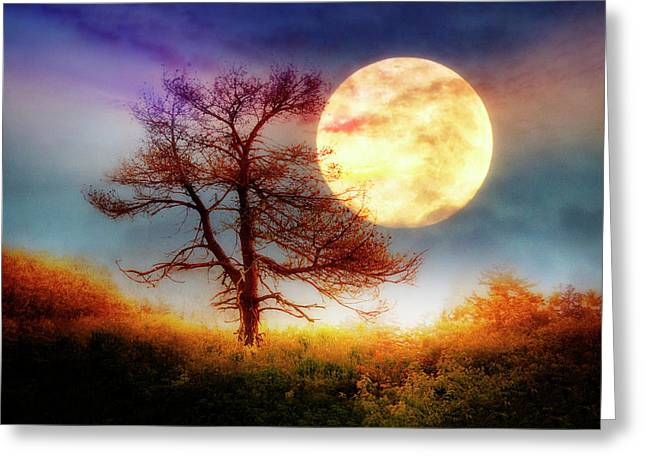 Reach For The Moon Greeting Card
