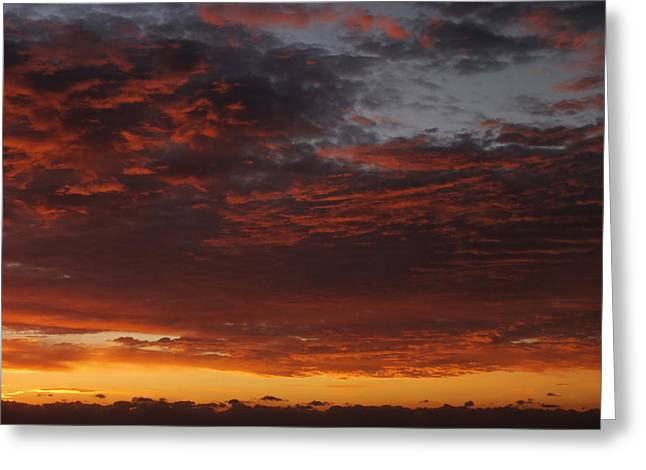 Ominous Greeting Cards - Reach for the Sky 12 Greeting Card by Mike McGlothlen