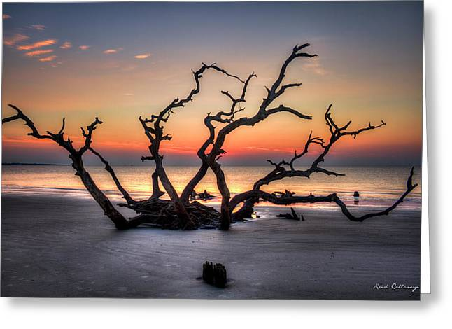 Greeting Card featuring the photograph Reaching Driftwood Beach Sunrise Jekyll Island Georgia Art by Reid Callaway