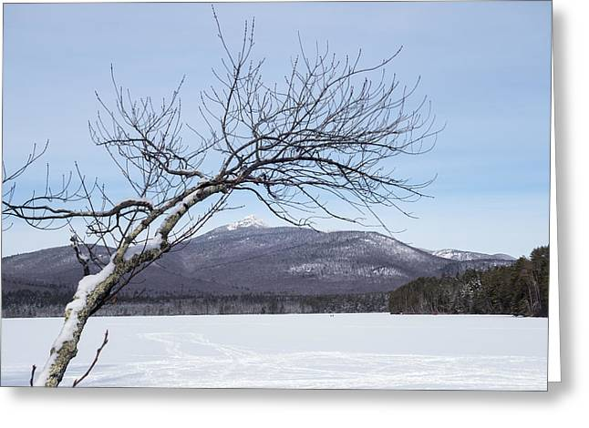 Reaching For The Mountains New Hampshire White Mountains Greeting Card by Toby McGuire