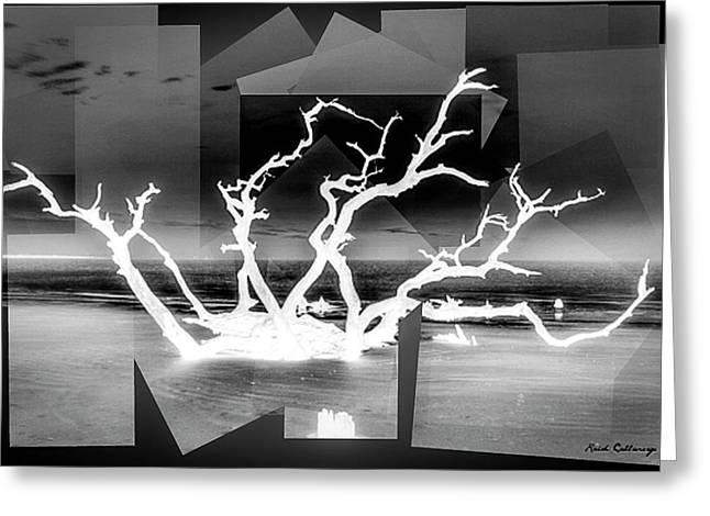 Reaching For You Bw Driftwood Beach Jekyll Island Art Greeting Card by Reid Callaway