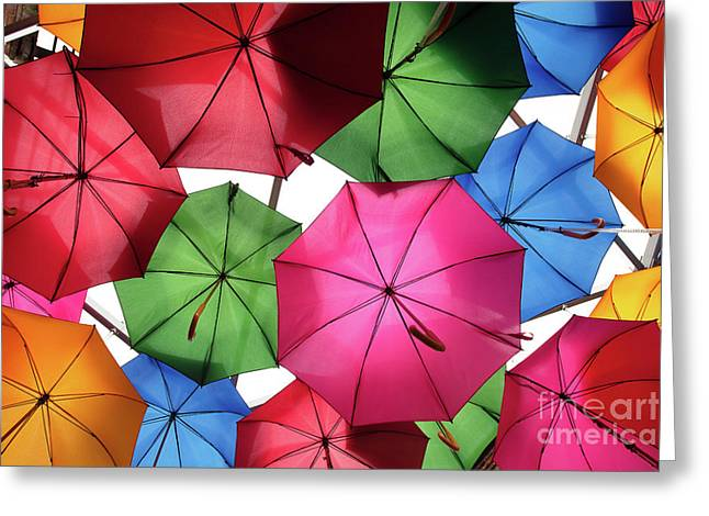 Ready For A Rainy Day Greeting Card