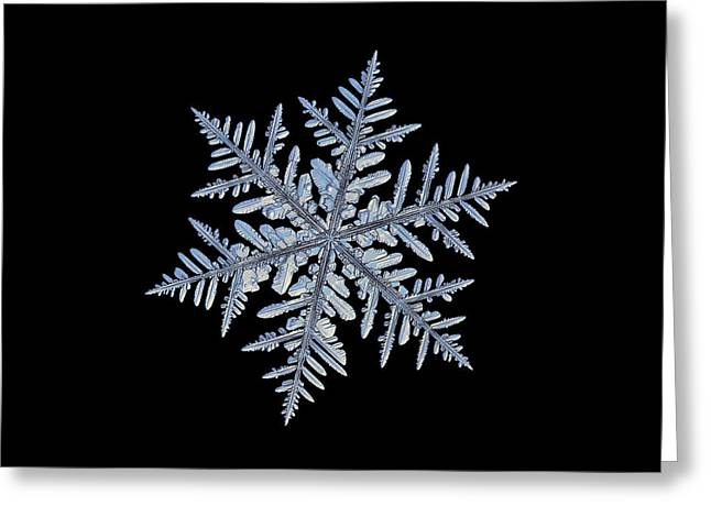 Real Snowflake - Silverware Black Greeting Card
