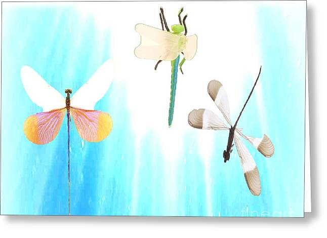 Realization Of Life Greeting Card by Belinda Threeths