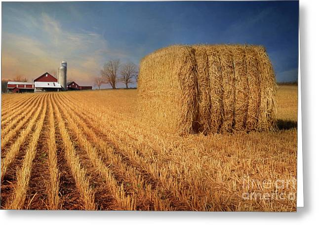Reap The Harvest Greeting Card
