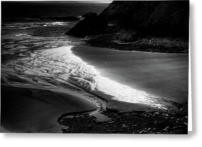 Receding Tide Greeting Card by David Patterson