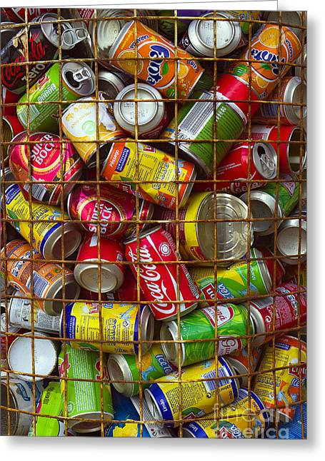 Recycling Cans Greeting Card by Carlos Caetano