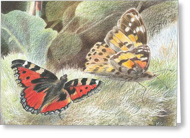 Red Admiral And A Painted Lady Greeting Card by Maureen Carter