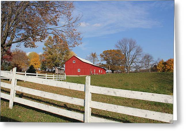 Red Amish Barn Greeting Card by Donna Bosela