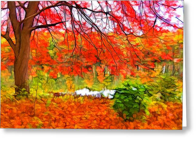 Red And Orange Greeting Card by Lilia D