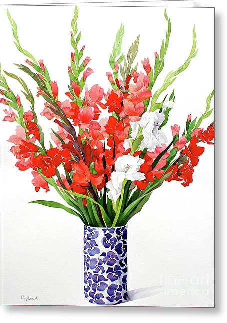Red And White Gladioli Greeting Card by Christopher Ryland