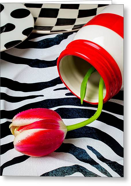 Red And White Jar With Red White Tulip Greeting Card by Garry Gay