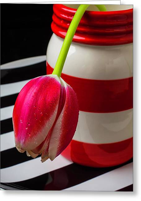 Red And White Jar With Tulip Greeting Card by Garry Gay