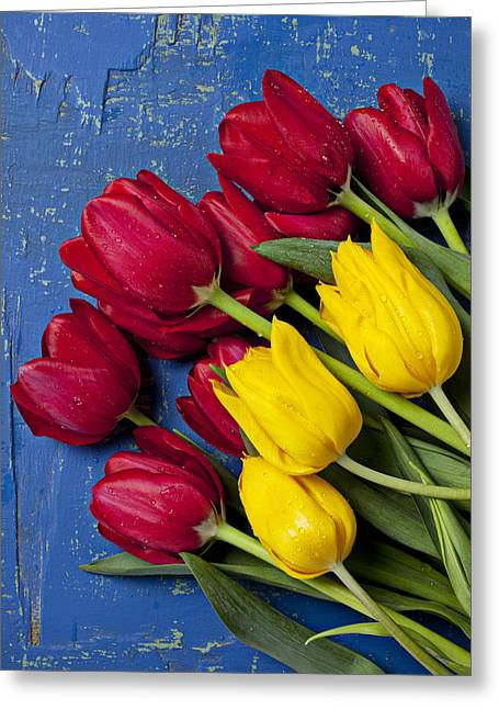 Dew Greeting Cards - Red and yellow tulips Greeting Card by Garry Gay