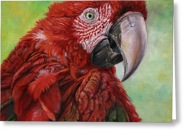 Red  Ara Chloropterus Macaw Greeting Card by Svetlana Ledneva-Schukina