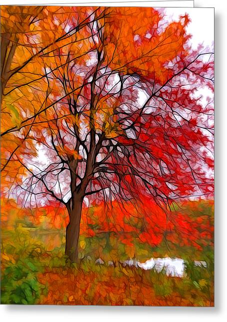 Red Autumn Tree Greeting Card by Lilia D