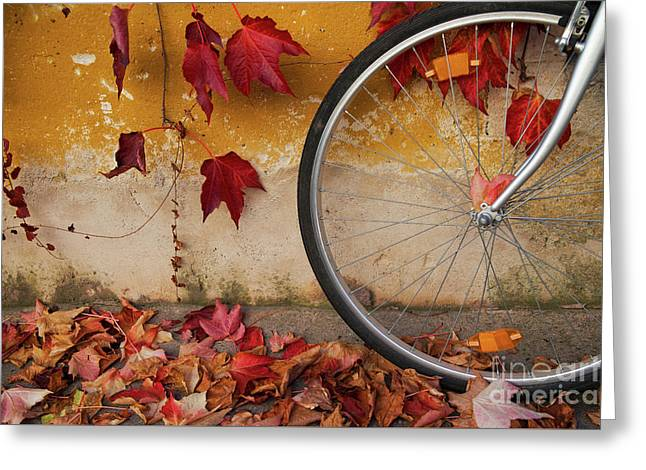 Greeting Card featuring the photograph Red Autumn by Yuri Santin