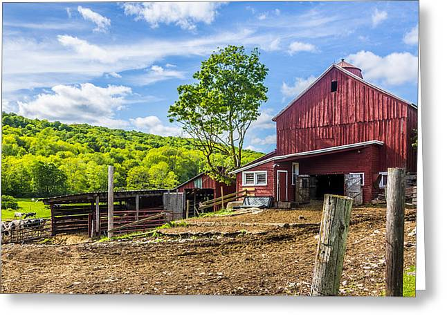 Greeting Card featuring the photograph Red Barn And Cows by Paula Porterfield-Izzo