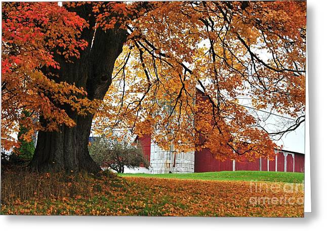 Red Barn In Autumn Greeting Card
