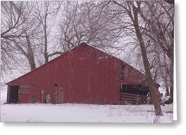 Red Barn Trees Snow Greeting Card