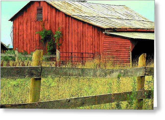 Red Barn With Vines Greeting Card by Michael L Kimble