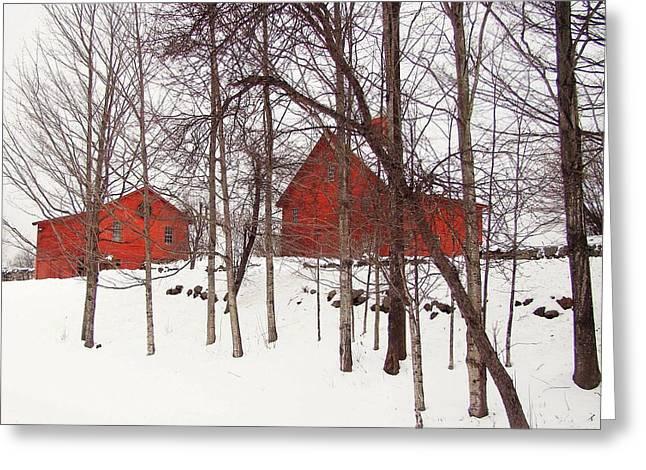 Red Barns Greeting Card