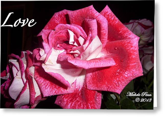 Red Beauty 3 - Love Greeting Card