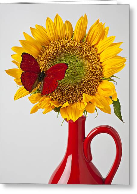 Simplicity Greeting Cards - Red butterfly on sunflower on red pitcher Greeting Card by Garry Gay