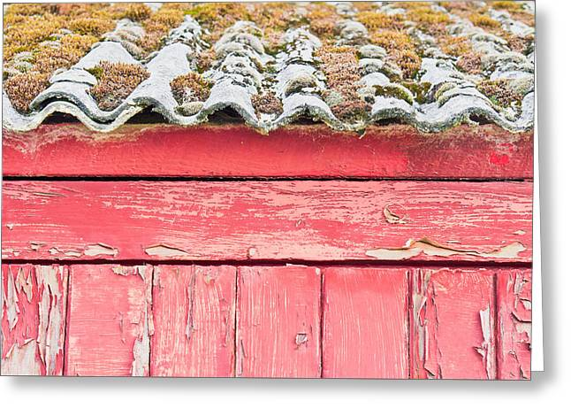 Red Cabin Greeting Card by Tom Gowanlock
