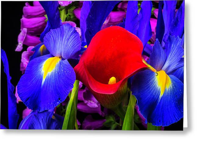 Red Calla Lily With Blue Iris Greeting Card