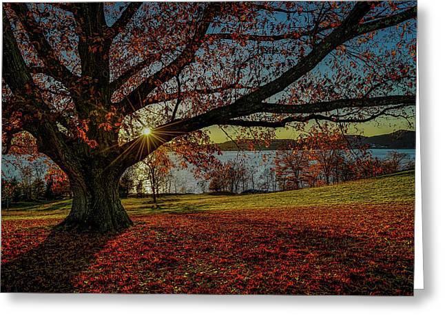 Red Carpet Greeting Card by Jeffrey Friedkin