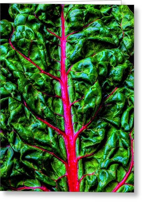 Red Chard Greeting Card