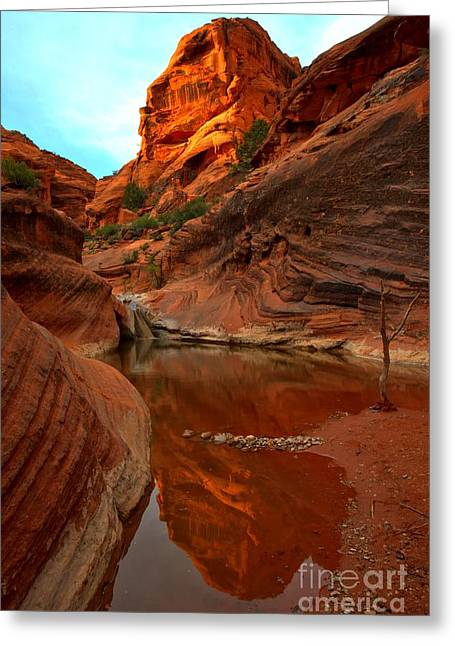 Red Cliffs Reflections Greeting Card