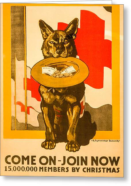 Red Cross Dog Greeting Card by David Letts