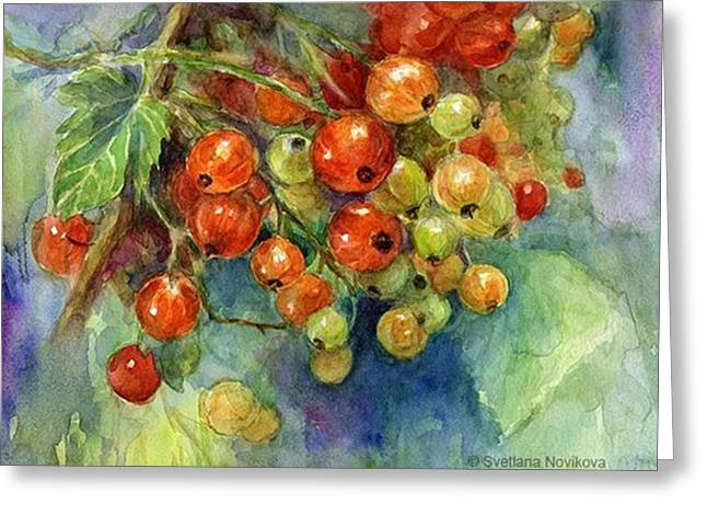 Red Currants Berries Watercolor Greeting Card
