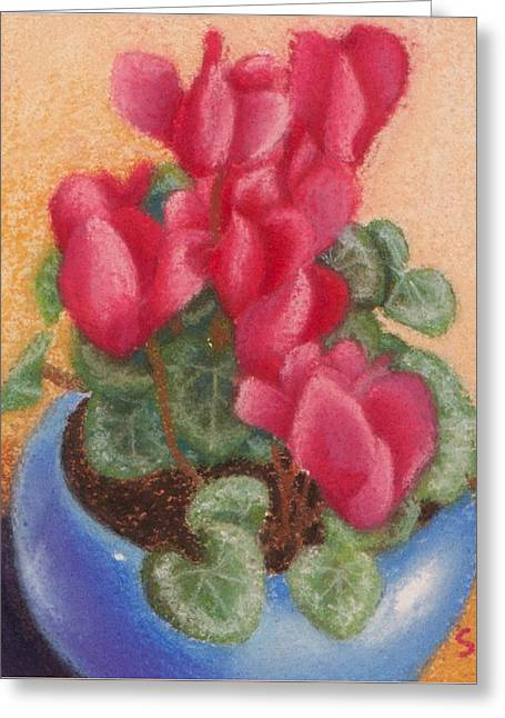 Red Cyclamen Blue Pot Greeting Card