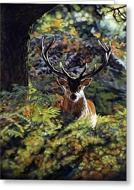 Red Deer Stag Greeting Card